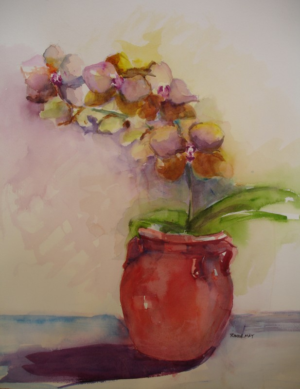 Rande-May-Orchids-2