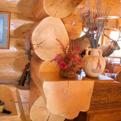 Shelf built into a log wall.