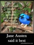 bluebird mag copy