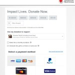 American Red Cross Visa Checkout