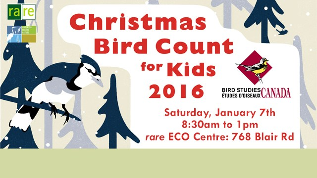 Christmas Bird Count for Kids 2016, Saturday January 7, 8:30 a.m. to 1:00 p.m., rare ECO Centre 768 Blair Road, bird studies Canada, rare logo, birds and trees