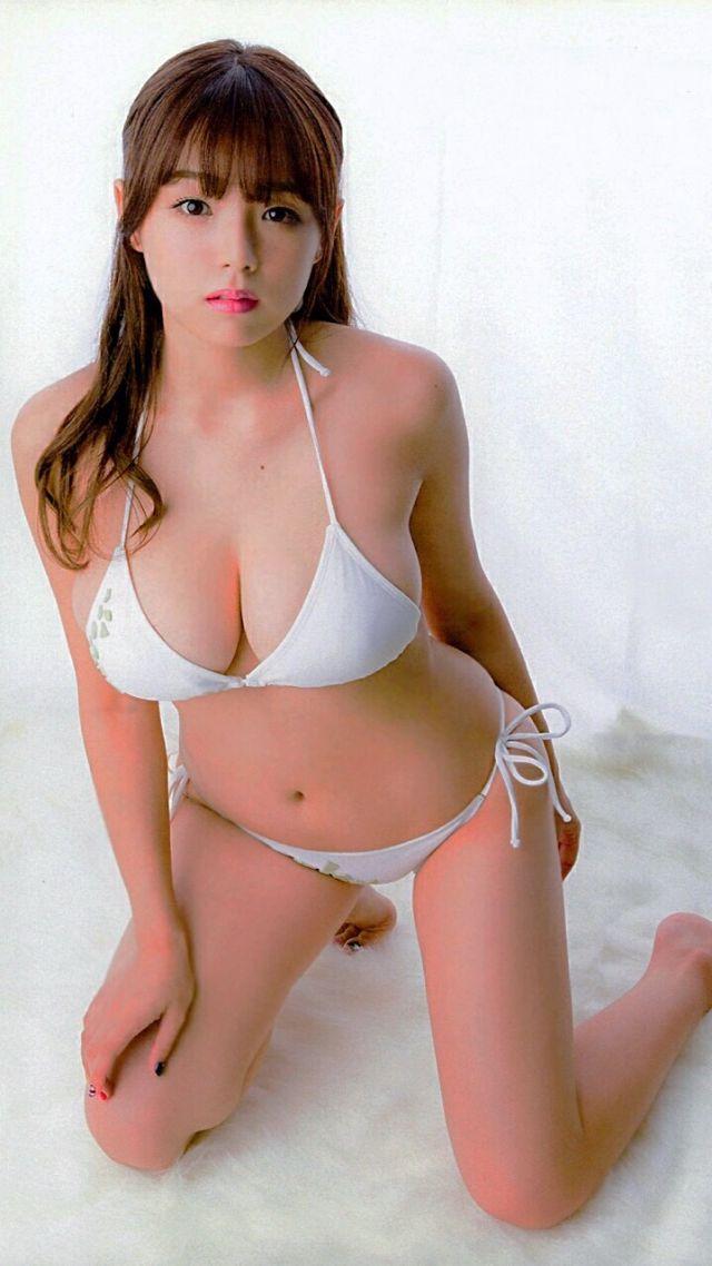 sinozakiai441