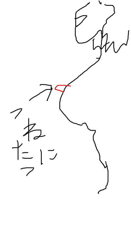 tikubi1
