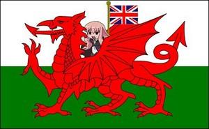 イギリス8