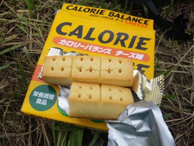 カロリーメイト2