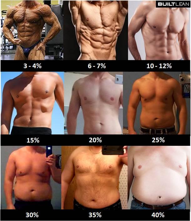 体脂肪率1