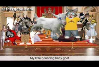 My Baby Goat
