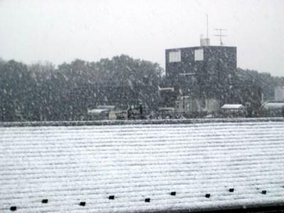 東京は初雪です
