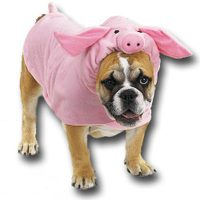 Pig_costume1_2