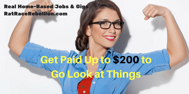 Get Paid Up to $200 to Go Look at Things