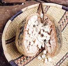 Baobab_seeds