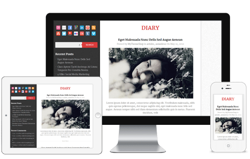 Diary-WordPress-theme