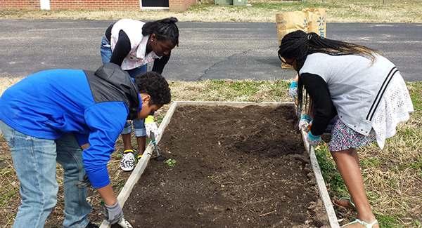 sms_garden_planting