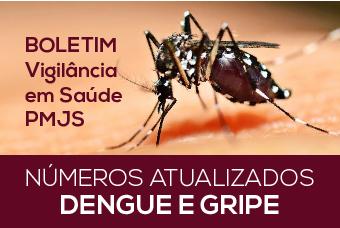 Jaraguá do Sul registra quatro focos de Aedes aegypti em 2018