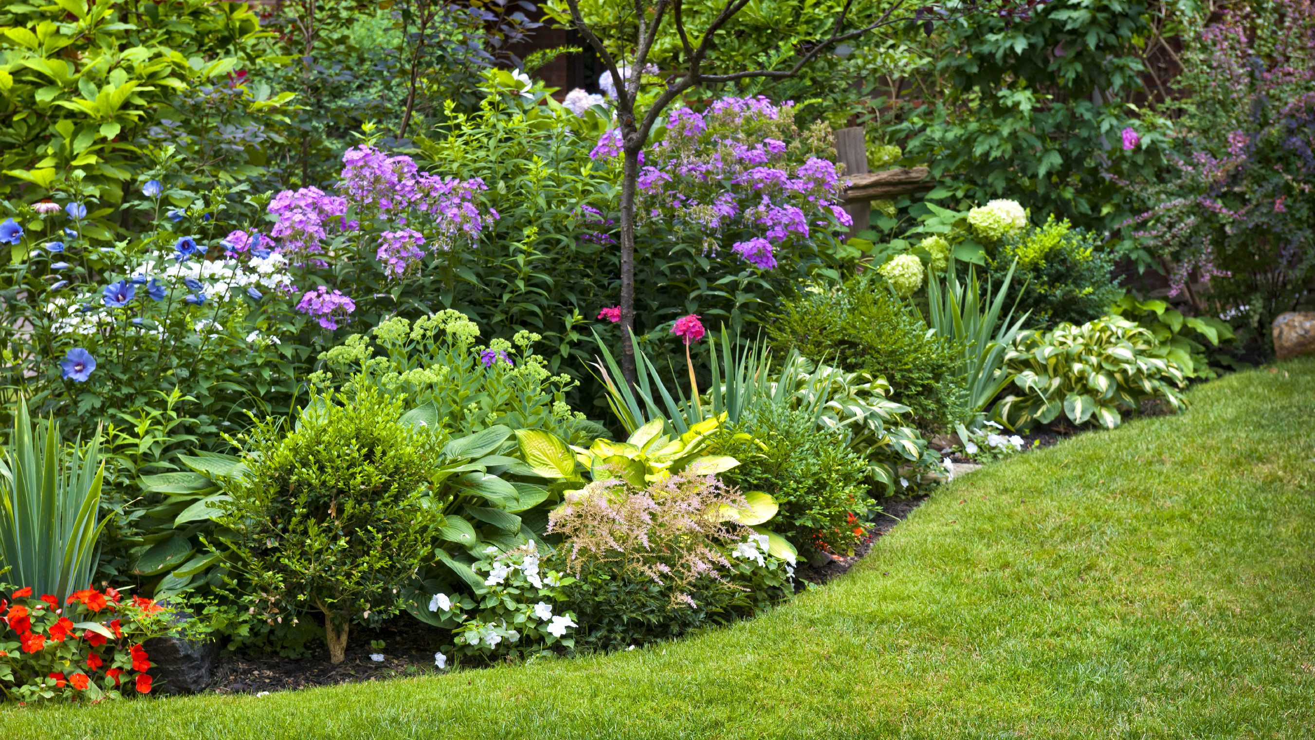 Fullsize Of Pictures Of Yards Landscaped