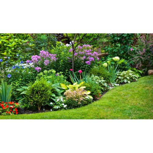 Medium Crop Of Pictures Of Yards Landscaped