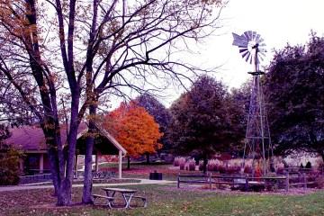Meadowbrook Park, Urbana, IL, 10/29/13, Photo by Dani Rudy