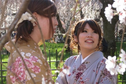 the tsunami and the cherry blossom DouBleB's 2012 Oscar Picks   Documentary (Short Subject)