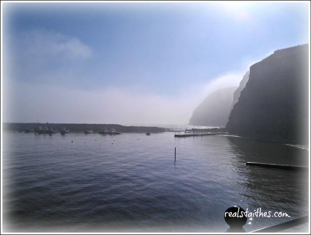 misty-morning-02