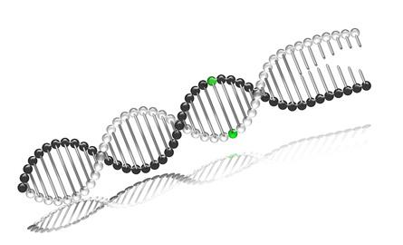 DNA_bw1g