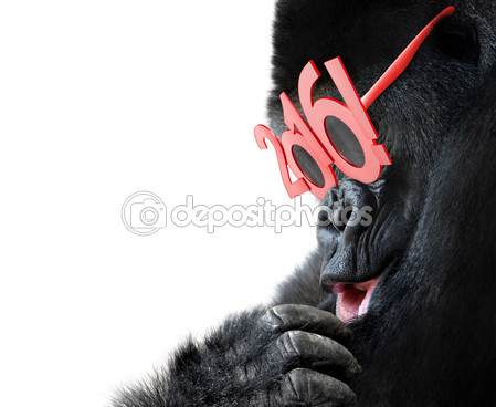 depositphotos_91645690-Gorilla-with-big-red-2016.jpg