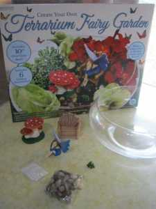 terrarium-fairy-garden-kit-horizon