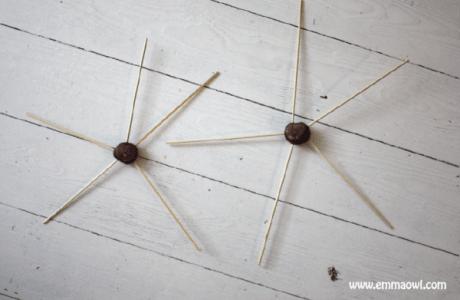 Chestnut-Spider-Web-Weaving-01