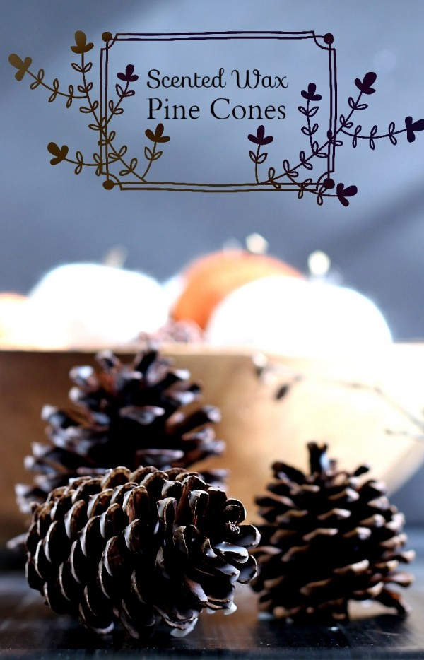 Scented-Wax-Pine-Cones-pin-gardenmatter.com_-800x1245
