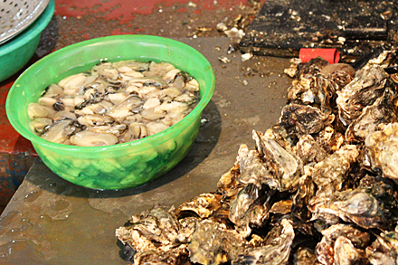 Chinese Oysters