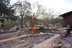 The potager at winter with the fountain taken down.