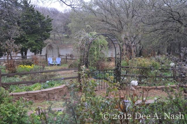 Frozen garden on April 10, 2013