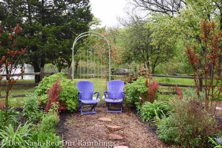 Purple chairs and Berberis thunbergii 'Orange Rocket'