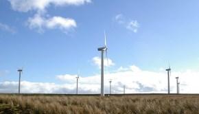scotland-wind