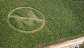 no_monsanto_crop_circle