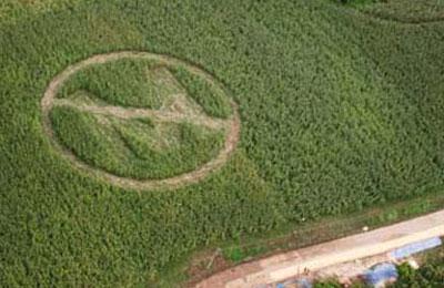 no_monsanto_crop_circle