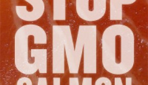stop_gmo_salmon