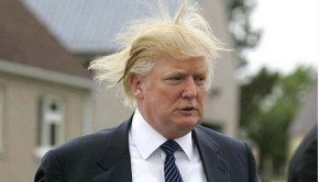 trump-vs-wind