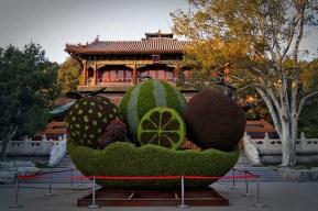 A propos zamiłowania do klombów, jak oni to robią, że to tak rośnie?! W tle kompleks w Parku Jingshan