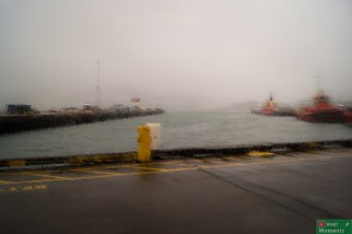 Niestety jedyny widok z Wellington, który zapadł nam w pamięć to strugi deszczu.