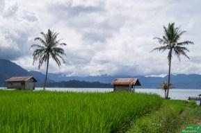 Główny krajobraz: góry, woda i pola ryżowe