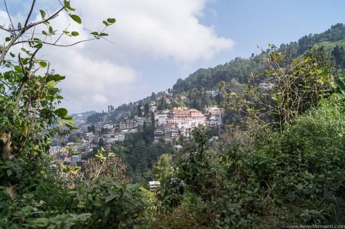 Darjeeling-46