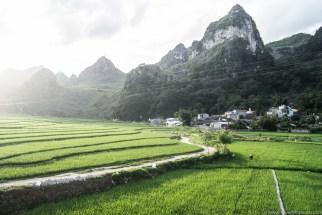 Szare skaliste góry pięknie odcinają się na tle soczystej zieleni