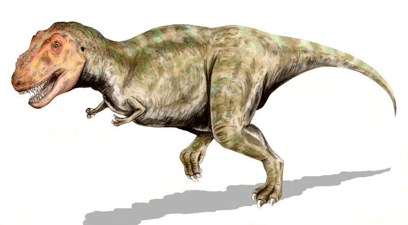 tyranosaurio