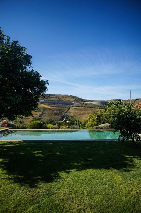 pool-and-vineyard-view-portugal