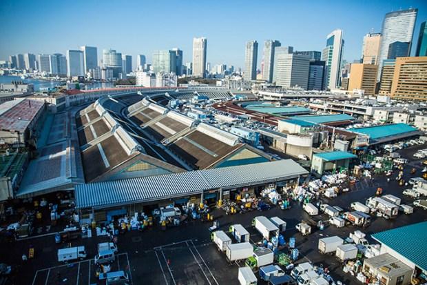 Tsukiji wonderland3
