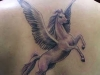 pegasus-free-tattoo-design