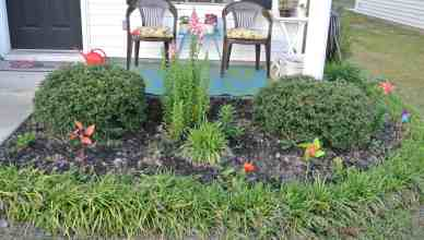 The lilies and daisies aren't blooming yet, but use your imagination!