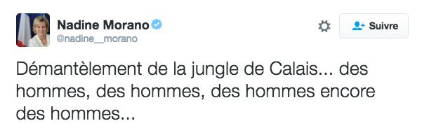 Message de Nadine Morano, eurodéputée LR, sur Twitter