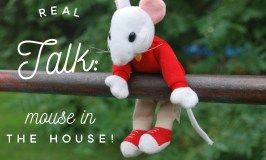 Real Talk:  Being Under Siege From A Tiny Mouse in the House