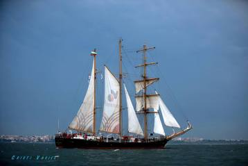 regata marii negre 2014 - parada velelor (14)